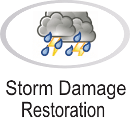 Storm damage icon